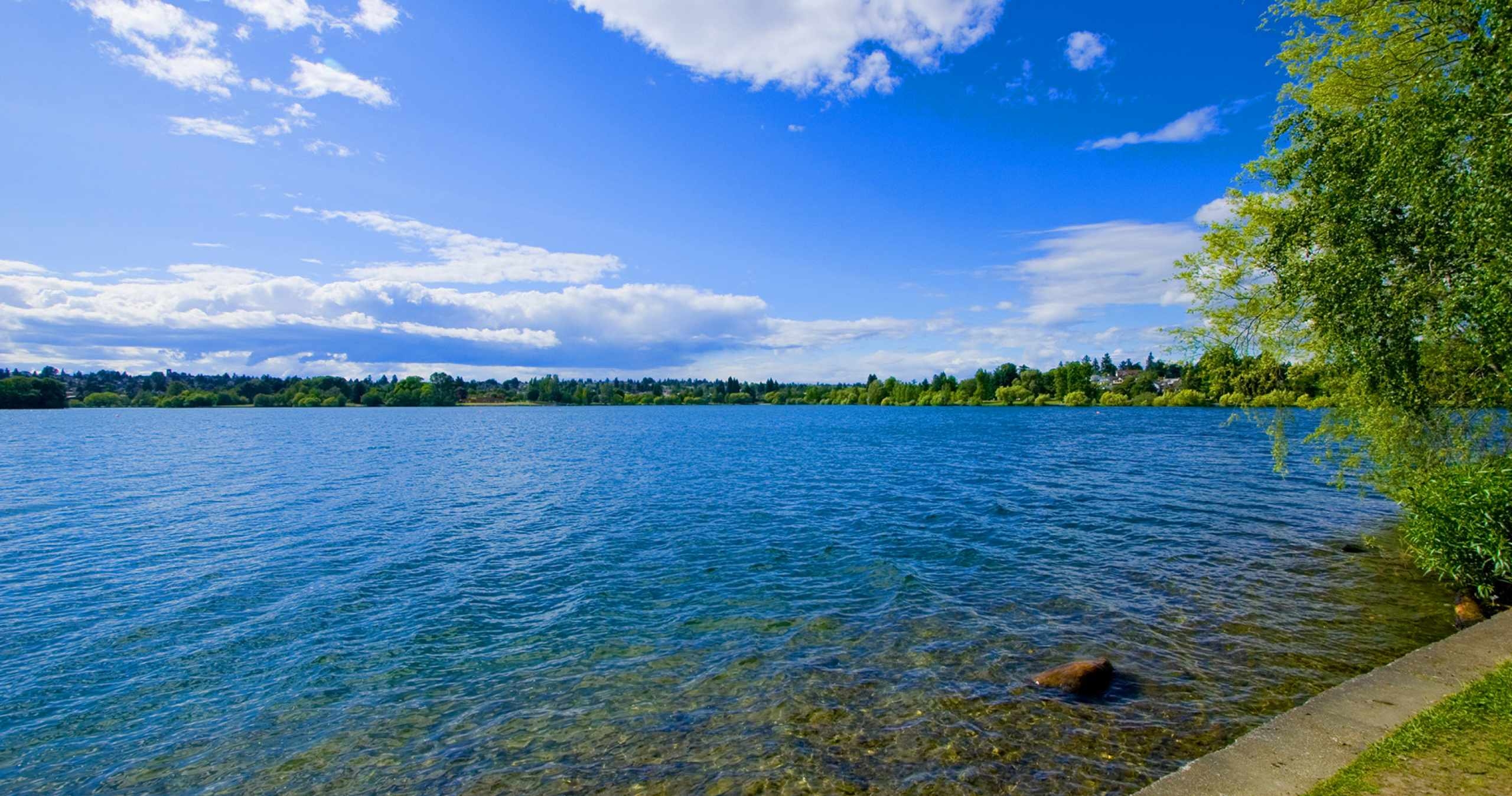 Green Lake on a Sunny Day in Seattle