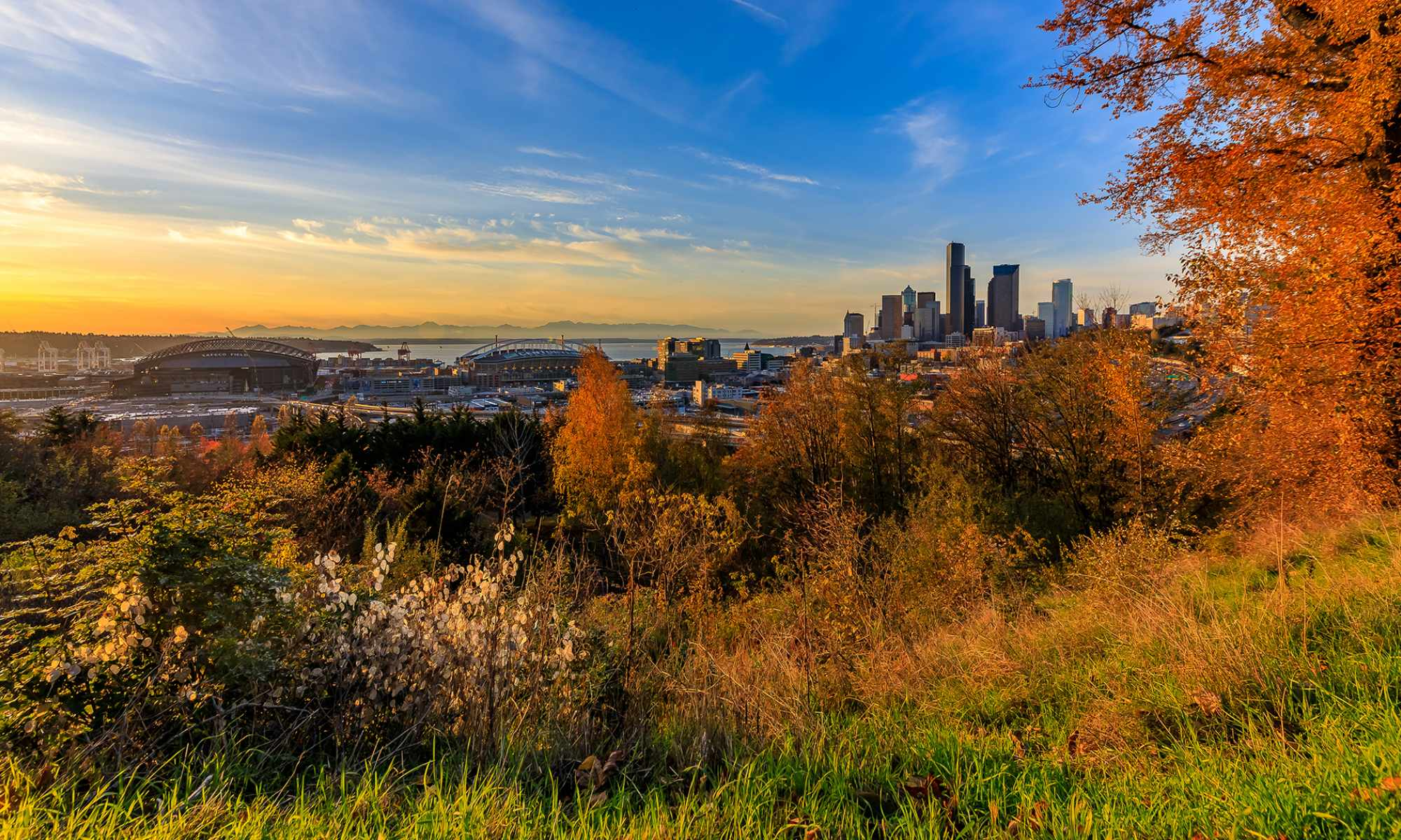 View of Downtown Seattle from Dr. Jose Rizal Park in the Beacon Hill Neighborhood