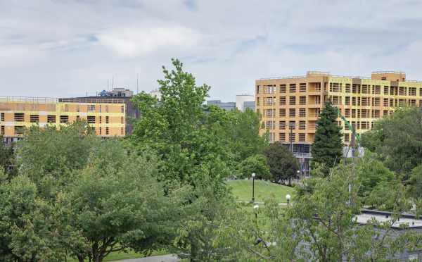Park Views from the Roof Deck of The Wyn Townhomes
