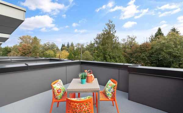 Roof Deck at 10843 11th Ave NE in the Lily Townhomes